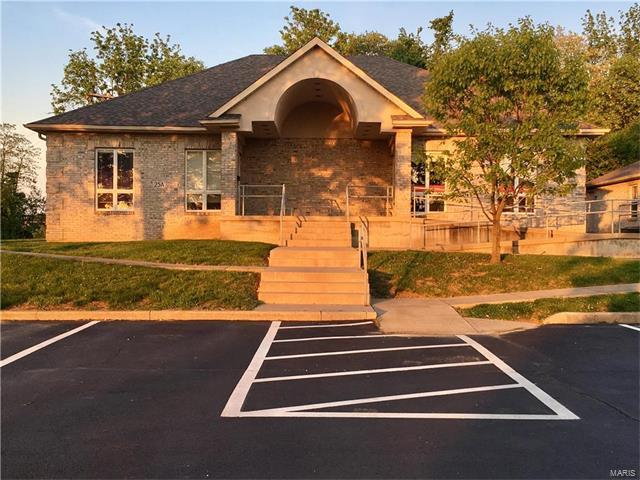 25 Professional Park Dr, Maryville, IL 62062 (#17090652) :: Fusion Realty, LLC