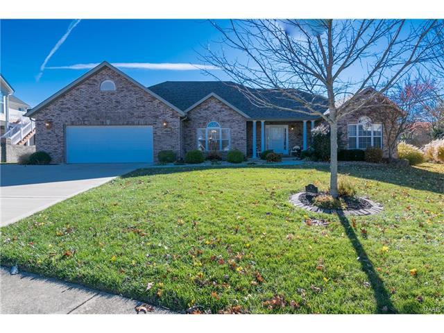 6 Chariot Court, Glen Carbon, IL 62034 (#17090806) :: Fusion Realty, LLC