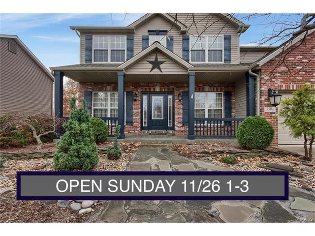 7002 Missionary Ridge Court, Edwardsville, IL 62025 (#17090899) :: Fusion Realty, LLC