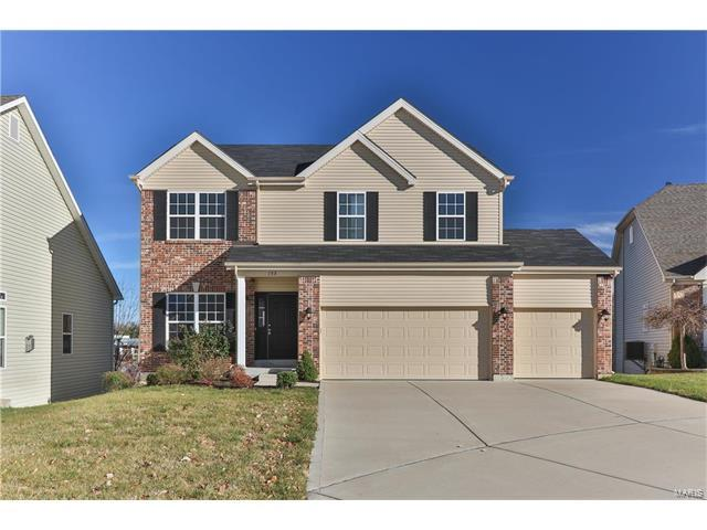 153 Berry Manor Circle, Saint Peters, MO 63376 (#17091377) :: RE/MAX Vision