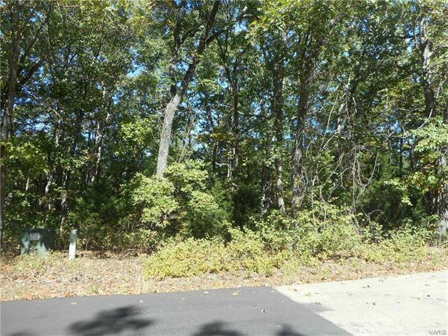 232 Buzzard Rock, Farmington, MO 63640 (#17091596) :: Clarity Street Realty