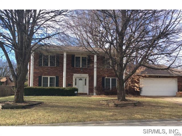 811 Reiss Road, O'Fallon, IL 62269 (#17094058) :: Fusion Realty, LLC