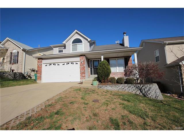 557 Winter Bluff Drive, Fenton, MO 63026 (#17094642) :: RE/MAX Vision
