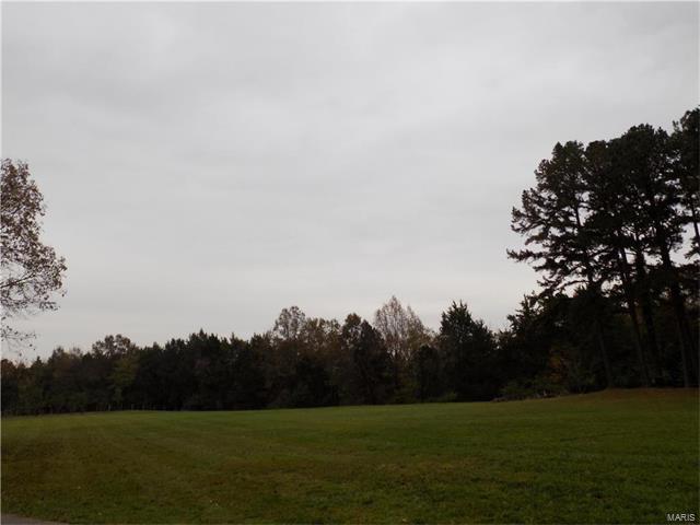 216 Deer Run, Eureka, MO 63025 (#17095350) :: RE/MAX Vision