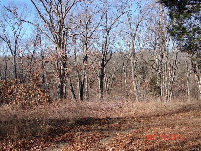 0 Echo Woods, Fletcher, MO 63030 (#17095453) :: Sue Martin Team