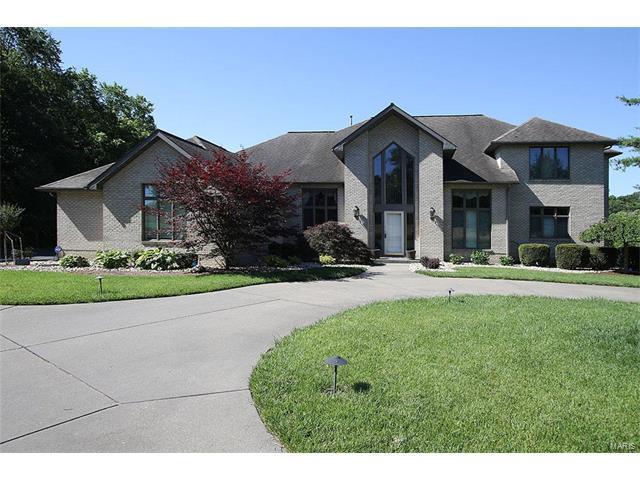 2260 Country Creek Lane, Belleville, IL 62223 (#17095525) :: Fusion Realty, LLC