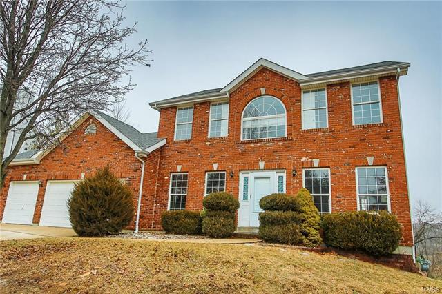 16281 Autumn View Terrace, Ellisville, MO 63011 (#18001826) :: The Becky O'Neill Power Home Selling Team