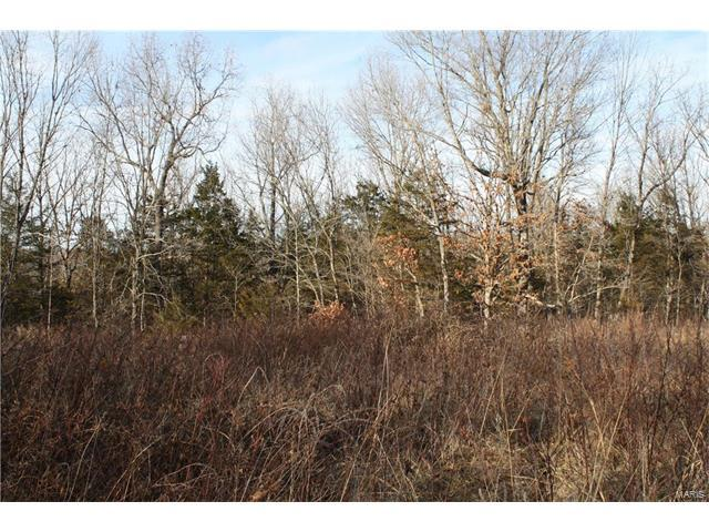 14435 County Road 7145, Rolla, MO 65401 (#18001893) :: Walker Real Estate Team
