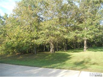 105 Starview Drive, Troy, MO 63379 (#18003086) :: St. Louis Finest Homes Realty Group