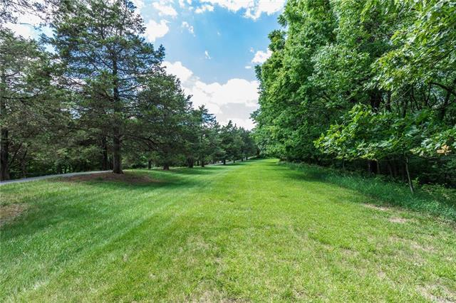 1580 Kehrs Mill Road, Chesterfield, MO 63005 (#18003160) :: The Becky O'Neill Power Home Selling Team
