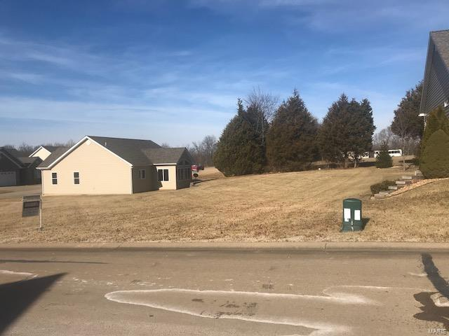 65 Butterfield, Farmington, MO 63640 (#18003822) :: PalmerHouse Properties LLC