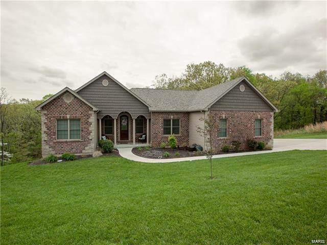 3330 Magnolia Lane, Festus, MO 63028 (#18010857) :: Sue Martin Team