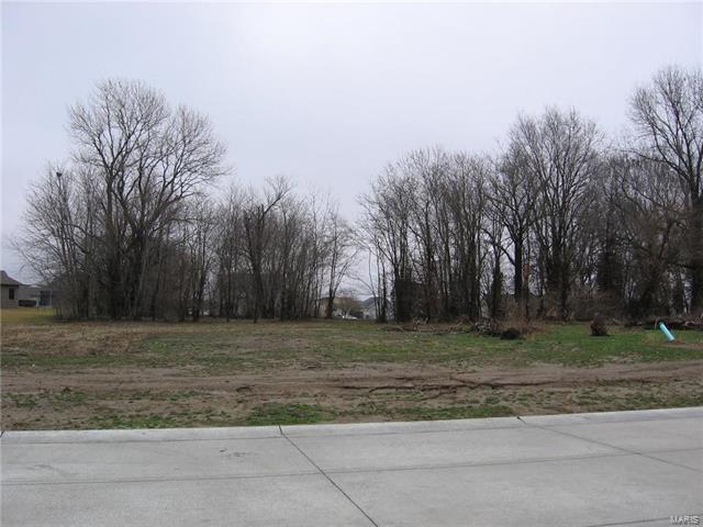 1114 Kreamer Drive, New Baden, IL 62265 (#18013603) :: Fusion Realty, LLC
