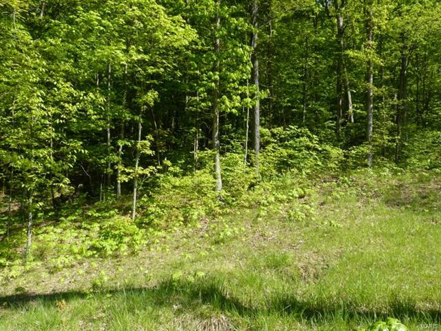 65 The Bluffs Dr #65 Lot, Eureka, MO 63025 (#18016251) :: Holden Realty Group - RE/MAX Preferred