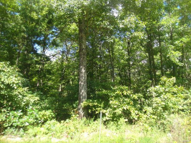 0 7 Acres M/L Lakeview Trail, Raymondville, MO 65555 (#18016435) :: Sue Martin Team