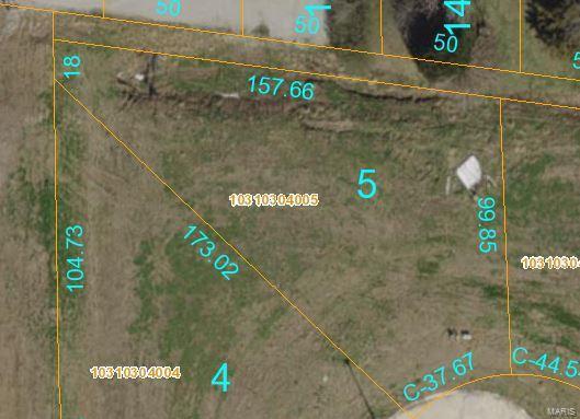 716 Mortar Street, Mascoutah, IL 62258 (#18020580) :: Fusion Realty, LLC
