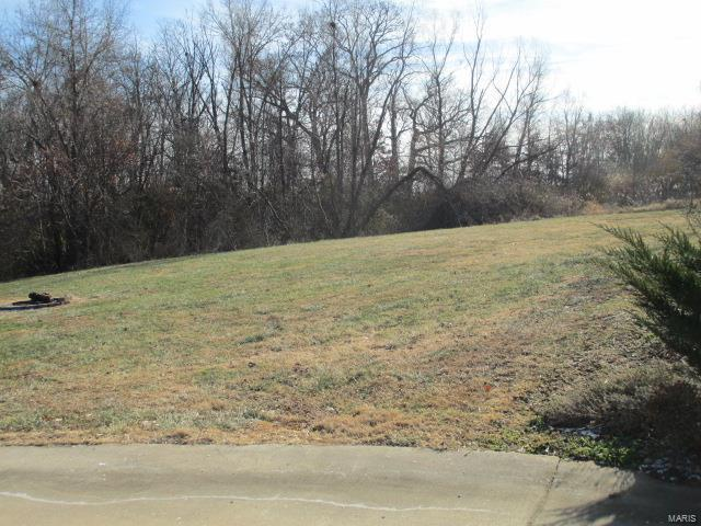 170 May Avenue, Winfield, MO 63389 (#18027047) :: The Kathy Helbig Group