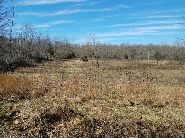 5383 County Road 675, Birch Tree, MO 65438 (#18032067) :: Holden Realty Group - RE/MAX Preferred