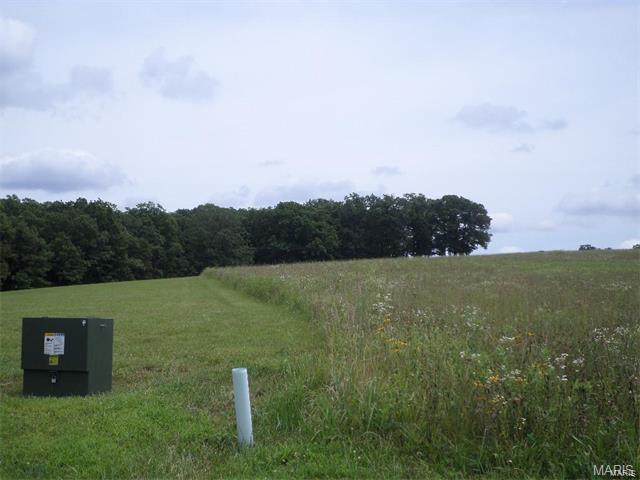 4 Brooke Ridge Lane, Gerald, MO 63037 (#18035185) :: Sue Martin Team