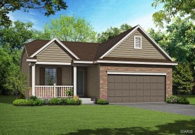 165 Noahs Mill Drive, Lake St Louis, MO 63367 (#18042493) :: Clarity Street Realty