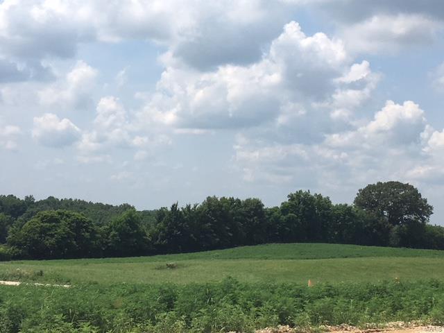 7 Ridge Road, Oak Ridge, MO 63769 (#18048531) :: Hartmann Realtors Inc.