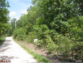 1 Oak Trails-Lots 1&2- #2 3-7, Hillsboro, MO 63050 (#18069083) :: RE/MAX Professional Realty