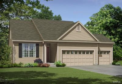 1 Denmark 1.5 @ Shady Creek, Lake St Louis, MO 63367 (#18076813) :: The Becky O'Neill Power Home Selling Team