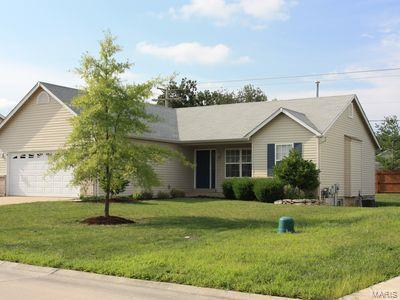 13 Wistar Way, O'Fallon, MO 63366 (#18089039) :: Kelly Hager Group   TdD Premier Real Estate