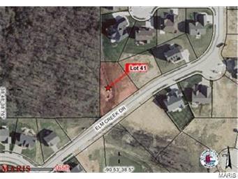517 Elm Creek, Wentzville, MO 63385 (#18093986) :: The Becky O'Neill Power Home Selling Team