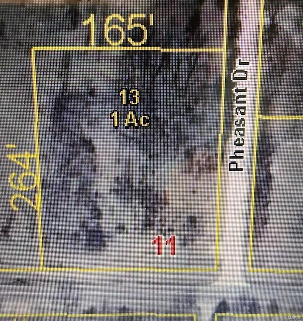 30509 Pheasant, Lebanon, MO 65536 (#18094502) :: Walker Real Estate Team