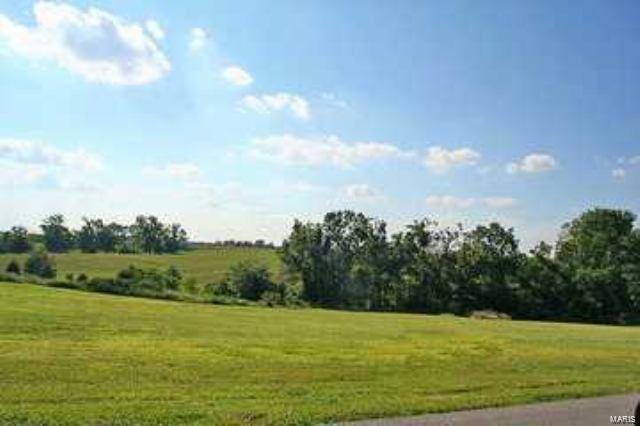82 Saddlebrooke Ridge, Jackson, MO 63755 (#19003183) :: Kelly Hager Group | TdD Premier Real Estate