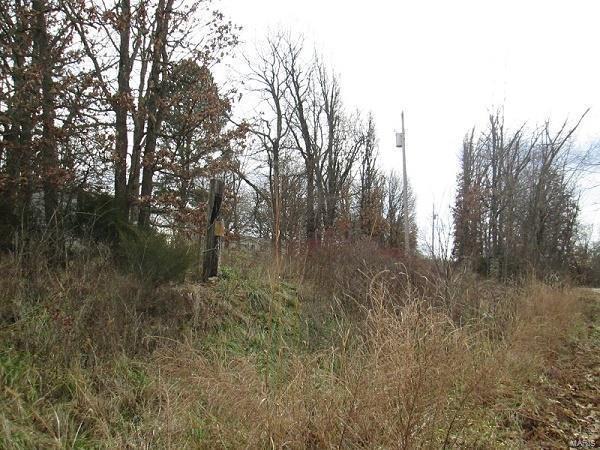 25998 Ranger Road, Richland, MO 65556 (#19003288) :: Walker Real Estate Team