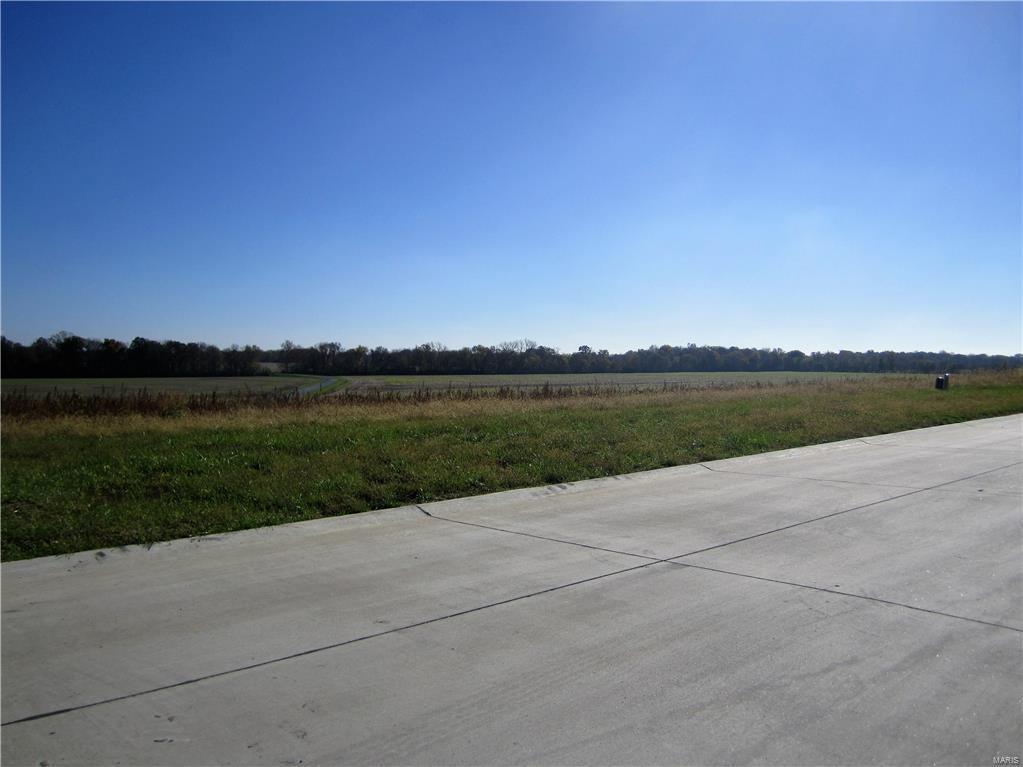 3402 Arbor View Court - Photo 1