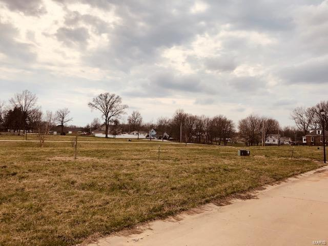 0 Amber Drive, OKAWVILLE, IL 62271 (#19011062) :: The Kathy Helbig Group