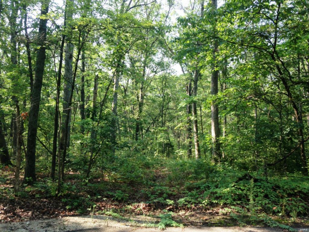 3 Clarks Hollow (Lot 3) Lane - Photo 1