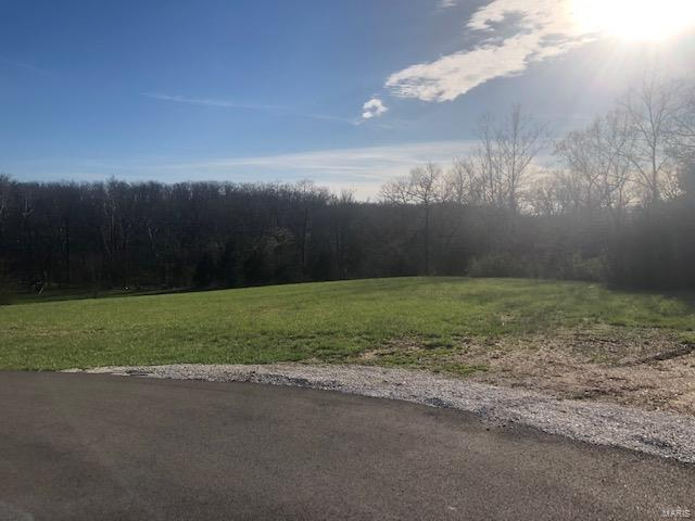 35 Lot Number On Ivy Court, Wright City, MO 63390 (#19024347) :: RE/MAX Professional Realty