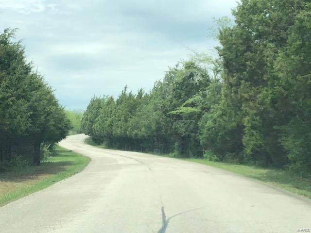 0 Pioneer Road - Photo 1