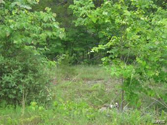 9536 Bent Tree Drive, Hillsboro, MO 63050 (#19041297) :: Peter Lu Team