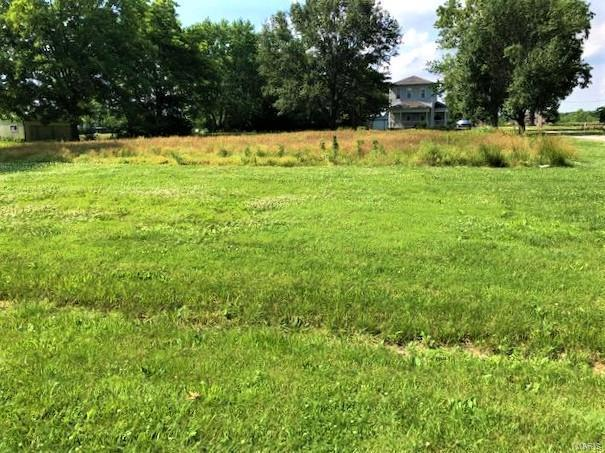 0 Wessel Subdivision Lot 2, OKAWVILLE, IL 62271 (#19043953) :: The Kathy Helbig Group