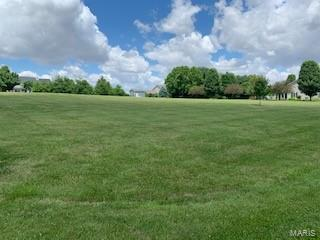 0 Daiber Road Lot 39, Highland, IL 62249 (#19044151) :: The Kathy Helbig Group