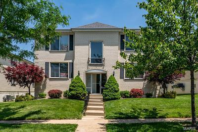 10017 Chardin Way #4, St Louis, MO 63128 (#19044697) :: RE/MAX Vision