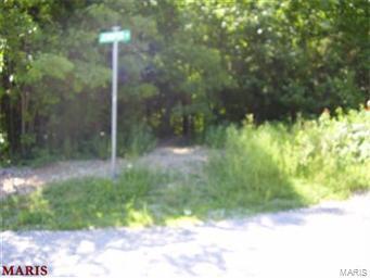 0 Carter Drive, House Springs, MO 63051 (#19045214) :: Matt Smith Real Estate Group