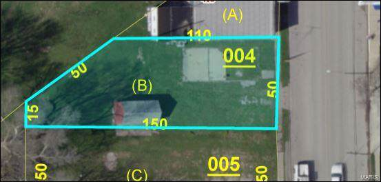 417 Livingston Avenue, Livingston, IL 62058 (#19046153) :: RE/MAX Professional Realty