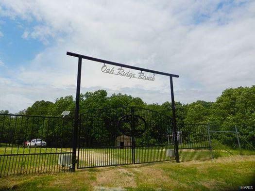 494 Droptine Lane, Mack Creek, MO 65786 (#19049575) :: Realty Executives, Fort Leonard Wood LLC