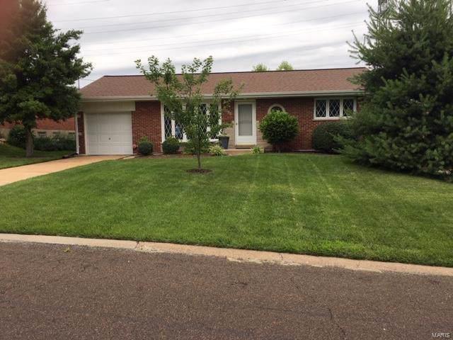 9519 Dorisann, St Louis, MO 63123 (#19050146) :: The Becky O'Neill Power Home Selling Team
