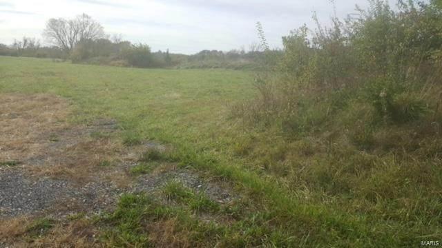 427 Cottage Grove #43, Wentzville, MO 63385 (#19059927) :: Krista Hartmann Home Team