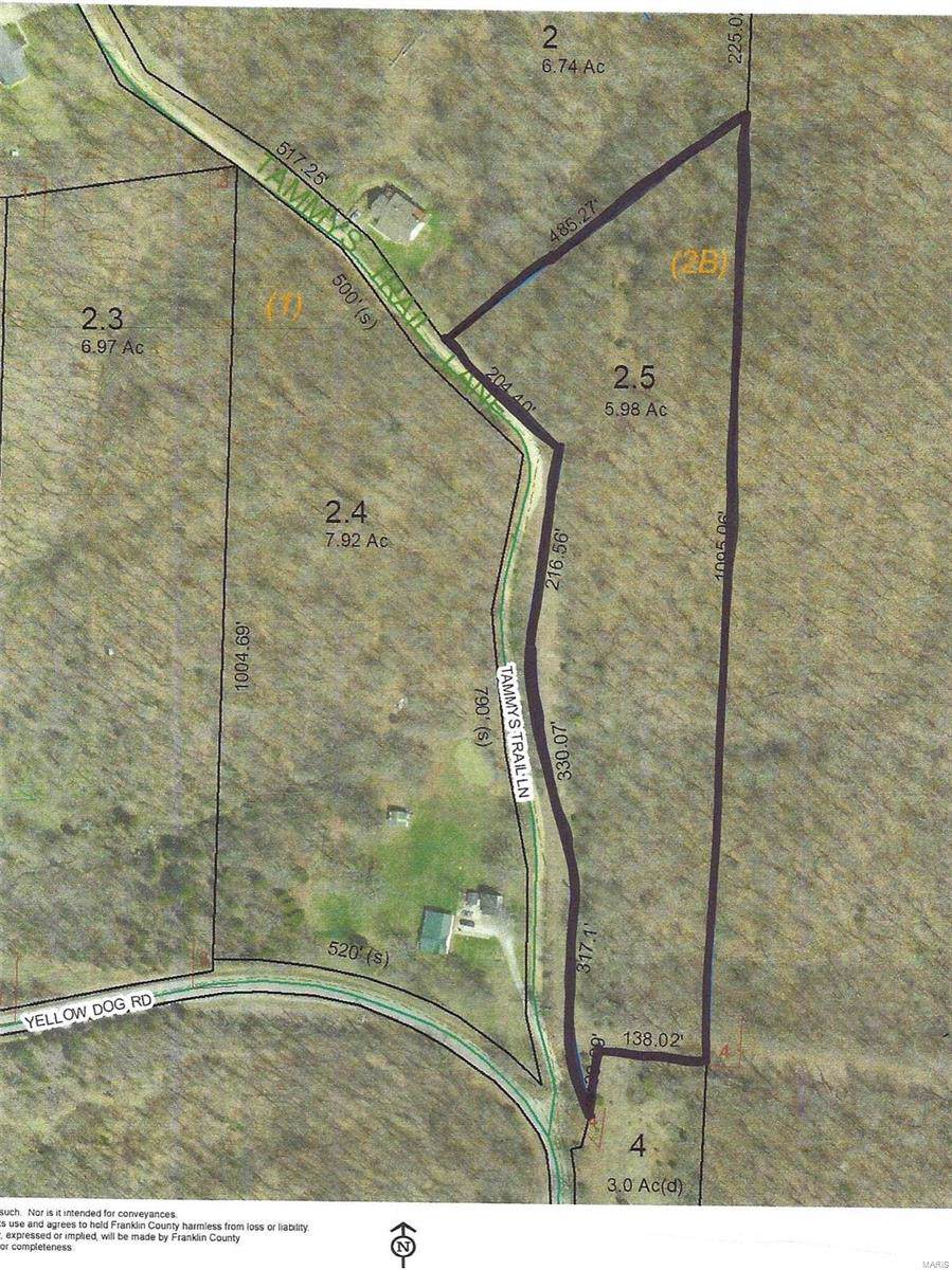 5 .98 Acres Tammys Trail - Photo 1