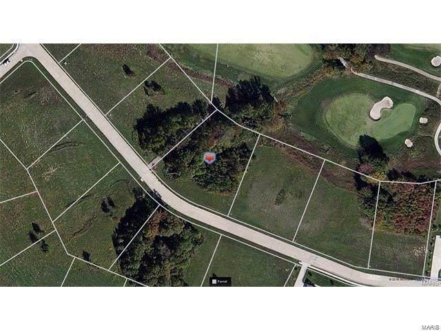 13 Dalhousie Drive, Cape Girardeau, MO 63701 (#19071437) :: Peter Lu Team