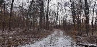 38 Maple Creek, Monroe City, MO 63456 (#19079172) :: RE/MAX Professional Realty