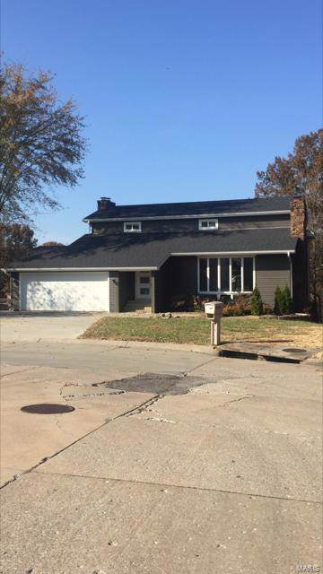 1571 Bunker Hill, Cape Girardeau, MO 63701 (#19084918) :: Clarity Street Realty